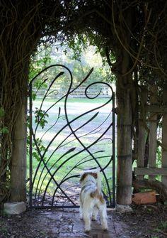 Grasslands Garden Gate – Colin Little