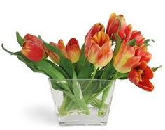 clear vase with 10 stem of orange and red or any color tulips.  $45.00