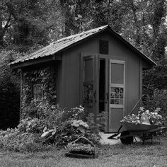 Have To Have It Cedar Shed X Ft Beach House Garden Shed