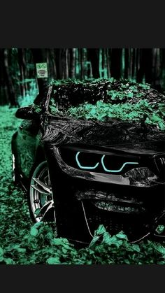 Bmw Sports Car, Exotic Sports Cars, Cool Sports Cars, Cool Cars, Mustang Wallpaper, Car Iphone Wallpaper, Sports Car Wallpaper, Cool Car Backgrounds, Nissan Gtr Wallpapers