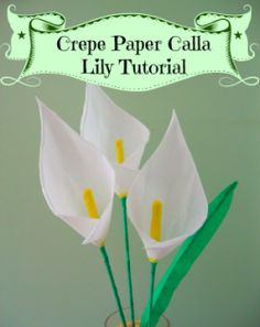 Crepe paper calla lily tutorial #crepe #paper #flower