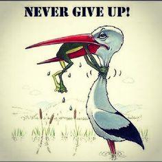 Never Give Up: A Teacher's Motto » Politichicks.com
