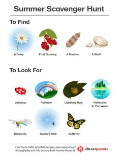 Senses scavenger hunt. It's full of stuff to find, look for, smell and feel!