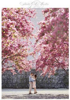 Jaqueline & Robert – Spring Engagement Session with Crabapple Trees - Ottawa wedding venue - Ottawa wedding - wedding photography