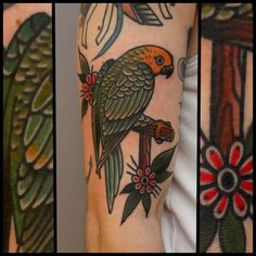 Parrot Tattoo by Tony Nilsson