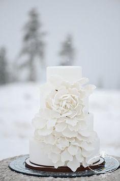 Amazing White Cakes Wedding Cakes Photos on WeddingWire