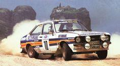 Ari Vatanen-David Richards 1981