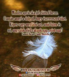 Angyali üzenet: Minden aprócska jel előtted hever - Angyalok fénye Mandala, Mandalas
