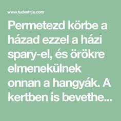Permetezd körbe a házad ezzel a házi spary-el, és örökre elmenekülnek onnan a hangyák. A kertben is bevetheted! - Tudasfaja.com Home And Garden, Cleaning, Homemade, Diy, Gardening, Green, Decor, Mint, Tips
