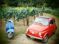 Fiat 500 / Tuscany / Italy