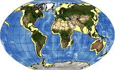 Southeast U.S. Continental Shelf LME Continental Shelf, Marine Ecosystem, Shelves, Animals, Shelving, Animales, Animaux, Shelving Units, Animal