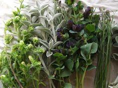Campanula Lambs ear, Cerinthe and Cornflowers