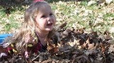Our latest post, Families in Nature, has some great ideas to get out and about with all ages. #BeWilder