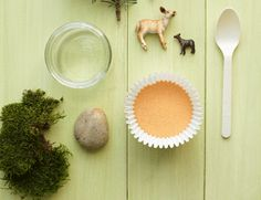 Cool toddler craft idea: nature dioramas! All you need: a jar, sand/soil/cotton/moss, small plastic animal figures, and twigs/shells/leaves/pebbles.