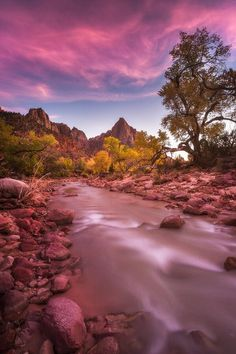 US Dept of Interior ‏@Interior 3m3 minutes ago  Stunning pink #sunset @ZionNPS by Scotty Perkins #Utah
