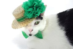 I am dress up in green so I do not get pinch