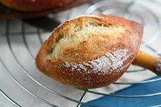 Angie's Recipes . Taste Of Home: Weizenbrötchen - German Hard Rolls with Poolish