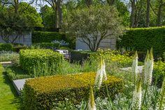 The Telegraph Garden at the RHS Chelsea Flower Show 2015 / RHS Gardening