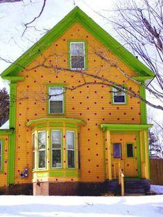 a polka dot house