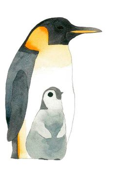 Penguins and Other Sea Birds by Matt Sewell