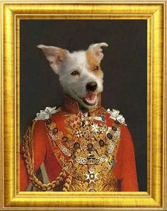 Royal Cats & Dogs custom dog portraits in regal, renaissance or funny uniform created by our pet portraiture artist within a week for Custom Dog Portraits, Pet Portraits, Dog Lover Gifts, Dog Lovers, Cheap Pets, Cat Memorial, Dog Costumes, Dog Paintings, Dog Cat