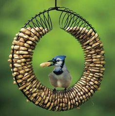 Great idea!  Old slinky turned into peanut bird feeder