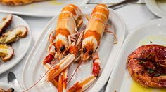 Fresh langoustine - via Bizarre Foods: Lisbon, Portugal | Andrew Zimmern traveled to Lisbon, Portugal, to check out its impressive food scene. Go behind the scenes with Andrew to get his take on the food, people and amazing culture of Lisbon.