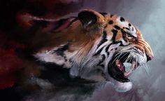 Resultado de imagen para ojo de leopardo