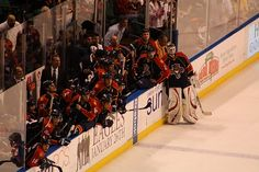 Florida Panthers Hockey