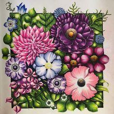 190 World Of Flowers Johanna Basford Ideas In 2021 Basford Johanna Basford Johanna Basford Coloring Book