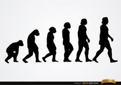 Human evolution silhouettes showing transformation from primates to Homo habilis, Homo erectus and passing various species to become Homo sapiens. It's a nice design to use in articles related to evolution, as wallpaper, or in printed designs, t-shirts, etc. High quality JPG included. Under Commons 4.0. Attribution License.