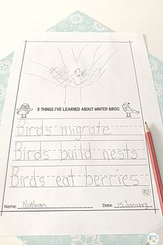 Montessori Winter Bird Activities - Natural Beach Living Movement Activities, Nature Activities, Montessori Activities, Writing Activities, Pre Writing, Writing Prompts, Early Learning, Fun Learning, Finger Strength