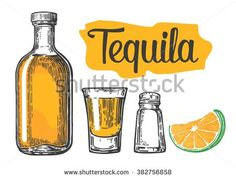 Glass and bottle of tequila, salt and slice of lime.Vintage vector engraving illustration for label, poster, web, invitation to a party. - stock vector
