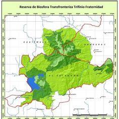 80% de la Reserva De Biosfera Transfronteriza #Trifinio Fraternidad corresponde a #ElSalvador #CentroAmerica #Biodiversidad