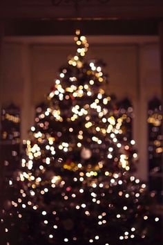 I want to wish everyone a very merry Christmas I hope it is filled with joy and cheer :) I love you guys! Christmas Feeling, Very Merry Christmas, Noel Christmas, All Things Christmas, Winter Christmas, Christmas Tree Tumblr, Christmas Fashion, Christmas Lights Wallpaper, Xmas Wallpaper