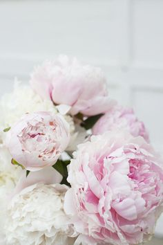 Pink and white peonies Peonies And Hydrangeas, White Peonies, Blush Peonies, Peonies Garden, Peonies Bouquet, Pink And White Flowers, Beautiful Flowers, Exotic Flowers, Yellow Roses