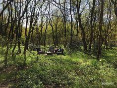 Loungeset-in-het-bos-.jpg (900×675)