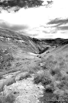 Golden Gate National Park, Clarens, South Africa Golden Gate, South Africa, Roots, National Parks, Mountains, Places, Nature, Travel, Naturaleza