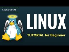 Linux Command Line Tutorial | Learn Terminal Commands - YouTube