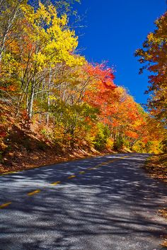 Fall Colors Along the Blue Ridge Highway, Tennesee, by PhotosbyFlood
