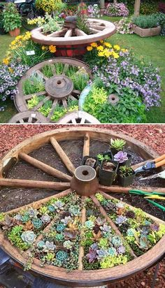 19 Cool Ideas to Create a Round Garden Bed with Recycled Things Recycle an old wagon wheel for a divided succulent or herb garden bed.Recycle an old wagon wheel for a divided succulent or herb garden bed. Garden Planters, Succulents Garden, Herbs Garden, Succulent Gardening, Flowers Garden, Flower Gardening, Fruit Garden, Edible Garden, Garden Tools