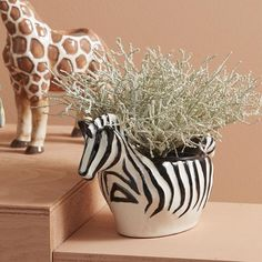 On-Trend Black & White Zebra Style Planter Pot. Ideal For Succulents & Small Flowering Plants. Small Flowering Plants, Yellow Octopus, Prickly Cactus, White Clay, Window Sill, Zebra Print, House Warming, Planting Flowers, Safari