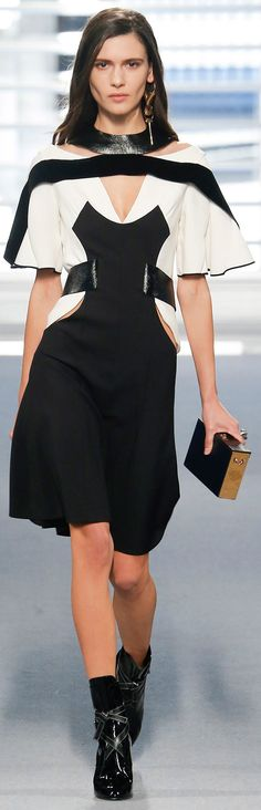 Louis Vuitton - Fall 2014 Ready-to-Wear