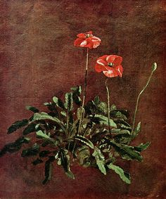 """""""Study of Poppies"""", John Constable."""