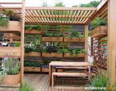 Vertical herb garden / pergola by stella