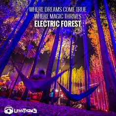 Deep In The Woods Of #ElectricForest