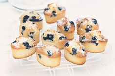 These dainty friands are so simple to make and are pure perfection when partnered with fresh blueberries.