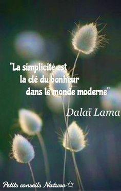 La simplicité....