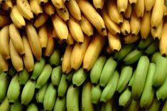 Tu primer Banano, cultiva Bananas en tu casa