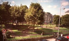 """Dublin Civic Trust on Twitter: """"Rarely seen early photographs of Wolfe Tone Memorial Park, the former St. Mary's Churchyard, after its planting up as a public park in the 1960s. Note the survival of the Victorian perimeter railings. From @Archidub1"""" / Twitter"""
